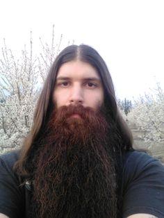 Hairy Men, Bearded Men, Hair And Beard Styles, Long Hair Styles, Long Hair Beard, Epic Beard, Beard Care, Facial Hair, Real Men