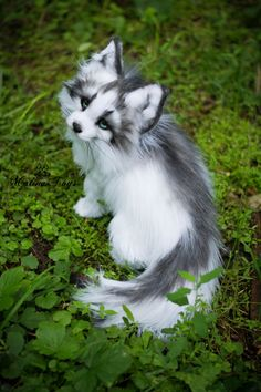 Handmade Poseable toy Arctic Marble Fox Fox plush Stuffed fox Fox toy Fox Soft Sculpture Stuffed toy Plush toy is part of Animals Hello everyone! I want to introduce to you my new - Cute Wild Animals, Baby Animals Pictures, Cute Little Animals, Cute Animal Pictures, Cute Funny Animals, Animals Beautiful, Animals And Pets, Cute Cats, Farm Animals