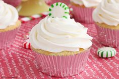 DOUBLE PEPPERMINT CUPCAKES Get into the holiday spirit with these festive double peppermint cupcakes. Peppermint exact and peppermint creamer are used both in the cupcake batter and frosting for a double peppermint dose! Cupcake Recipes, Cupcake Cakes, Holiday Cupcakes, Mini Cupcakes, Christmas Cookies, Peppermint Cupcakes, Boston Cream Pie, Dinner Rolls Recipe, Easy Baking Recipes