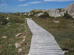 Joe Batt's Arm Seaside Walking Trail - 2007 Island Tour, Newfoundland, Seaside, Trail, Arm, Walking, Tours, Jogging, Arms