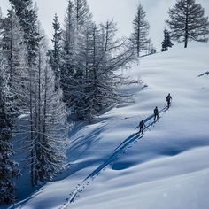 It is this time of the year again when we constantly find ourselves thinking of nothing but fluffy powder and beautiful ascents in winter wonderland. Winter is on!  #liveforsnow #powderlife #earnyourturns #skitouring #snowculture #ORTOVOX