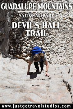 Check out what there is to see on the Devil's Hall Trail in Guadalupe Mountains National Park! Hiking In Texas, Texas Travel, Adventure Activities, Travel Activities, Guadalupe Peak, Family Road Trips, Family Travel, Guadalupe Mountains National Park, National Parks Usa