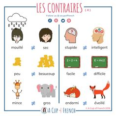 Learning French or any other foreign language require methodology, perseverance and love. In this article, you are going to discover a unique learn French method. Travel To Paris Flight and learn. French Language Lessons, French Language Learning, Learn A New Language, French Lessons, Spanish Lessons, Spanish Language, German Language, Dual Language, French Phrases