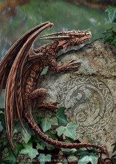 Baby walisischen Drachen 393