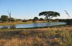 Risk takers, adventure lovers must know that there is a country in the South of Africa that will satisfy their passion. Wild safari, leopard and tiger search and fun trips to follow elephant trails are just some of the activities that await back packers and travelers who would decide to spend their vacation in Botswana.