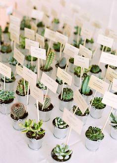 Boho and green wedding decor idea: succulent and cacti escort cards Wedding Bells, Wedding Flowers, Wedding Day, Succulent Wedding Favors, Cactus Wedding, Wedding Guest Gifts, Wedding Quotes, Wedding Reception, Wedding Greenery