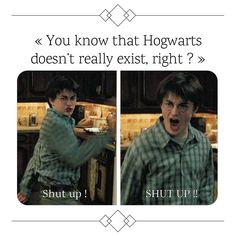 24 Memes in Real Life Harry Potter – Pitbul Memes Gay Harry Potter, Harry Potter Theme, Harry Potter Facts, Harry Potter Hogwarts, Draco, Slytherin, Harry Potter Pictures, Harry Potter Wallpaper, Harry Potter Funnies