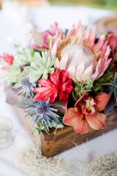 Beach Wedding Centerpieces - Exotic Blooms Centerpiece : King protea, sea holly, succulents, red cone ginger, and cymbidium orchids nestled in stained pine boxes are a rustic approach to a summery centerpiece. Protea Centerpiece, Flower Box Centerpiece, Table Flowers, Exotic Flowers, Beautiful Flowers, Fresh Flowers, Pastel Flowers, Tropical Flowers, Colorful Flowers