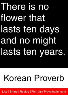 There is no flower that lasts ten days and no might lasts ten years. - Korean Proverb #proverbs #quotes