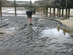 Footprints made in tidal mud flats 900,000 years ago in Norfolk, UK are the oldest outside Africa.