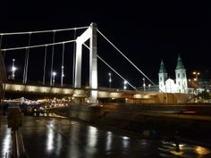 Danube River Cruise Ship    ||  DerTour Mozart   ||  Budapest, Hungary - Night Cruise - Elisabeth bridge  ||  140510