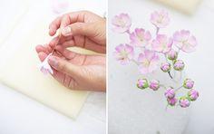 Cherry Blossom Branch Tutorial | Amy Atlas Events