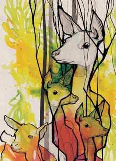 Ekaterina Koroleva #deer #color #illustration