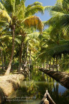 backwaters, Munroe Island, Kerala, India