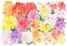 Caitlin McGauley flowers