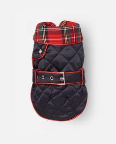 Abrigo Vera - Rojo. Abrigo para perro con tejido acolchado.