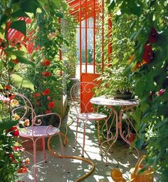 I want an outdoor area in an apartment like this