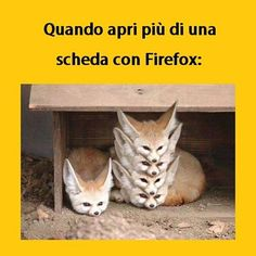 #tmlplanet #firefox #internet #ragazzi #ragazze