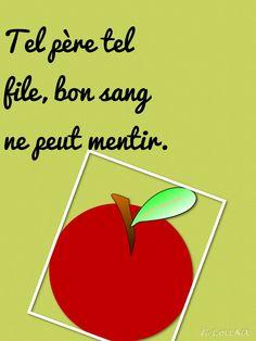 Manon Pottel