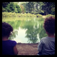 Toddler Reflections on our Friday Family Hike! #PreciousMoments | www.MommyHiker.com #OutdoorFamilies