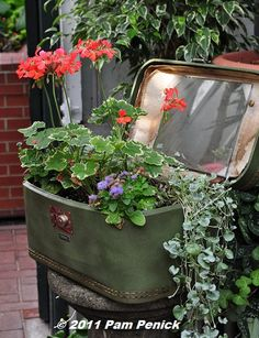 old suitcase as planter