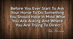 Before you ever start to ask your horse to do something you should have in mind what you are asking and where you are trying to direct - Tom Dorrance