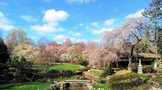 Shofuso Japanese Garden, Philadelphia