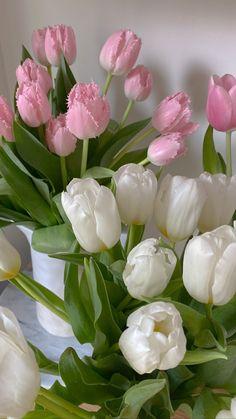 Aesthetic Iphone Wallpaper, Aesthetic Wallpapers, Flower Wallpaper, Wallpaper Backgrounds, My Flower, Beautiful Flowers, Flower Aesthetic, Cute Wallpapers, Planting Flowers