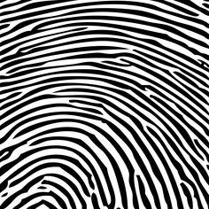fingerprint art art - Google Search