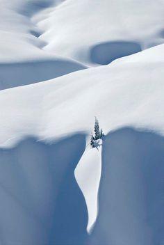 Snow Drop, North Cascades, Washington, USA, by Alan Majchrowicz, on 500px.