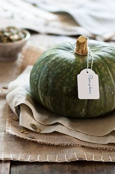 a green pumpkin by Laura Adani photography - www.lauraadani.com