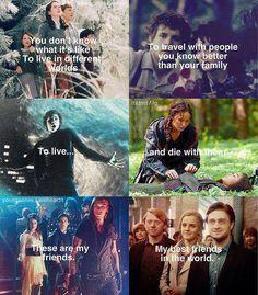 Narnia, LOTR and the Hobbit , PJO/HOO, the Hunger Games, TMI, & Harry…
