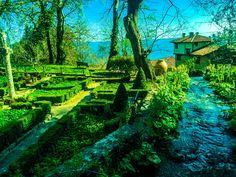 Balcic. Bulgaria, Gardens. Bulgaria, Vineyard, Traveling, Gardens, Outdoor, Viajes, Outdoors, Vine Yard, Trips