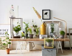 Great use of plants and textures