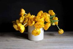 Nejkrásnější žlutý tulipán na farmě! Jasné, veselé odstíny a plné květy tvoří nádherné ozvláštnění záhonu i vázy. Belle Epoque