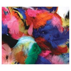 Feathers Hot Colors (Set of 4)