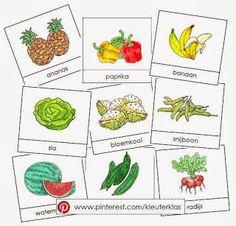 Kleuterklas: Activiteiten met woordkaarten bij het thema 'groente en fruit' (met tekeningen van Dagmar Stam)