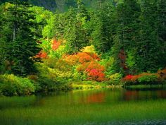 Nature, calme et volupté.