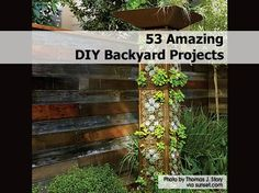 amazing-diy-backyard-projects-2