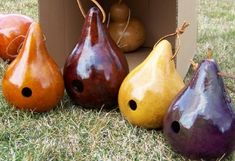 Gourd crafts, painted gourds, decorated gourds, gourd bird house, raw gourds