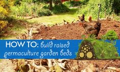 DIY hugelkultur: how to build raised permaculture garden beds