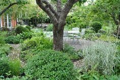 I Tages trädgård: I Katarinas trädgård