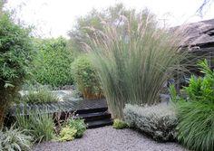 Knibb Design - Ling Garden.