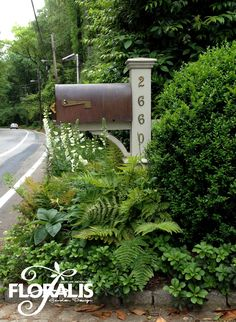 Mailbox Planting by Floralis. This is pretty but I don't have shade at my mailbox. :( I like the mailbox post. Mailbox Planter, Brick Mailbox, Mailbox Garden, Mailbox Landscaping, Landscaping Ideas, Mulch Landscaping, Landscape Architecture, Landscape Design, Garden Design
