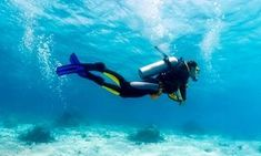 Groupon - Scuba-Diving Course for One or Two or 24-Hour Snorkeling Rental at I.B. Divers (Up to 47% Off) in Multiple Locations. Groupon deal price: $250