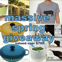 Spring Giveaway --please pick me!