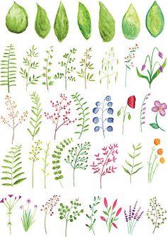 Free Watercolor Flowers, Watercolor Plants, Watercolor Leaves, Watercolor Cards, Watercolour Painting, Floral Watercolor, Painting & Drawing, Watercolors, Watercolor Artists