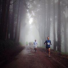 #correre #personaltrainerbologna #corsa