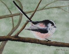Watercolour Long tailed tit