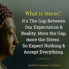 Best quotes positive buddha so true 60 ideas Wisdom Quotes, Me Quotes, Motivational Quotes, Inspirational Quotes, Yoga Quotes, People Quotes, Music Quotes, The Words, What Is Stress